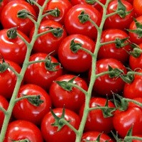 Черри-томат