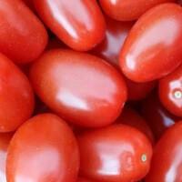 Сливовидный томат