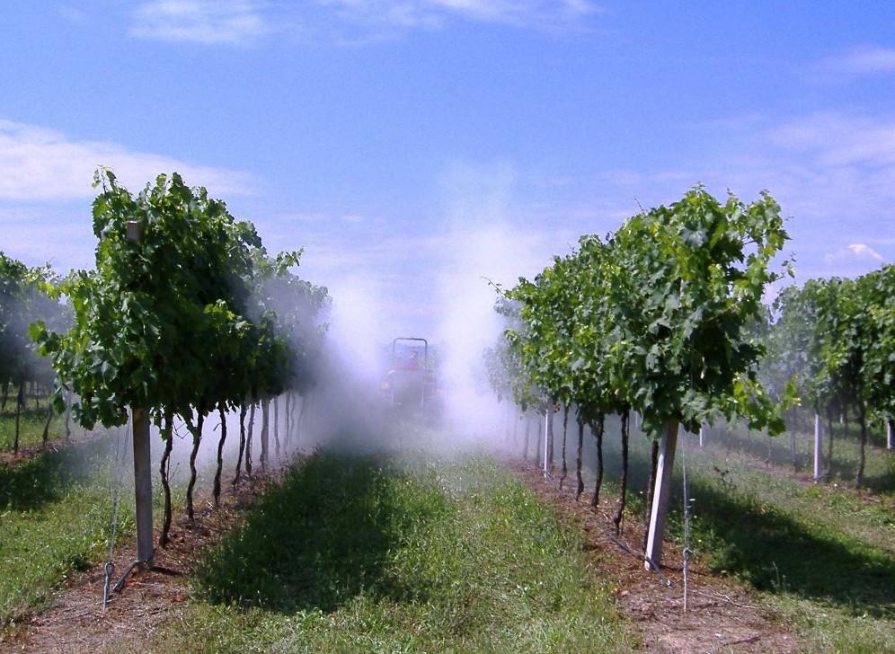 spraying 003